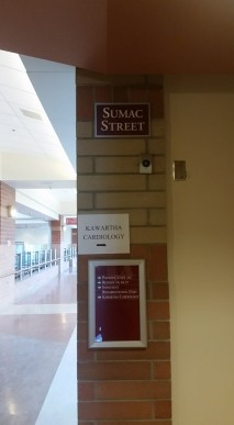 sumac street hospital