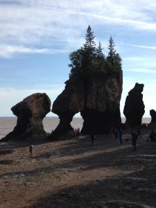 carol lynn wins hopewell rocks