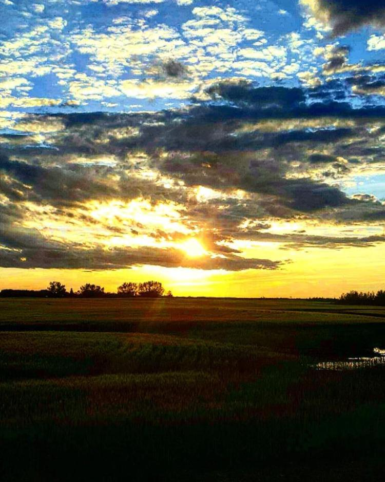alberta sunset maggie