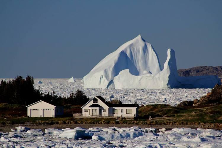 canada newfoundland labrador iceberg doreen dalley