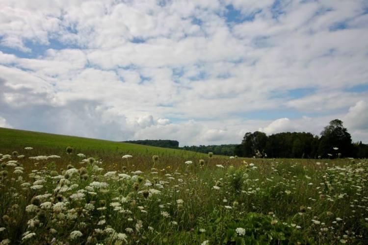 ontario hills and skies 2